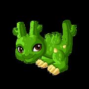 Cactus Baby