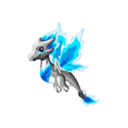 Flametail Juvenile