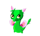 Pansy Dragon
