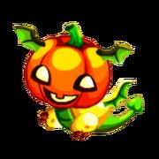 Pumpkin Juvenile