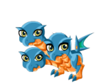Scylla Dragon