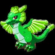 Emerald Adult