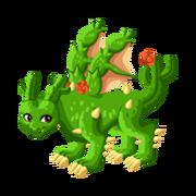 Cactus Epic