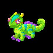 Chameleon Juvenile