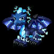 Blue Storm Juvenile