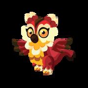 Owl Juvenile