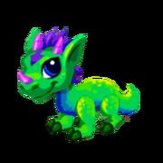 Aurora Juvenile