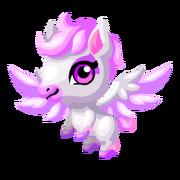 Pegasus 2nd Baby