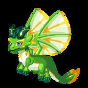 Hierophant Juvenile