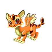 Tiger's Eye Juvenile