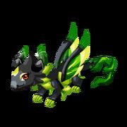 Dark Leaf Adult