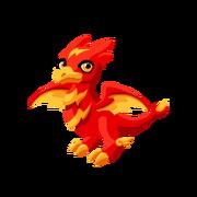 Fireflash Juvenile