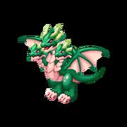 Hydra Adult