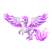 Pegasus 2nd Adult