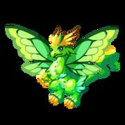 Sky Fairy Adult