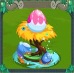 EggOrchid