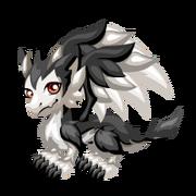 Snowhound Juvenile