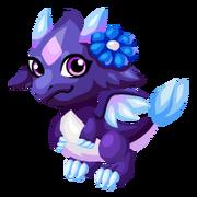 Nightflower Baby