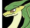 Leaf adult icon