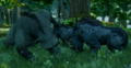 Bearfightingbronto.png
