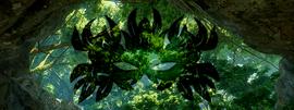 Dalish Quest Banner