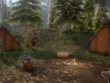 Risse in den Wäldern