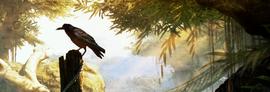 Антиванские вороны баннер
