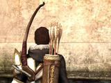 Авварский длинный лук