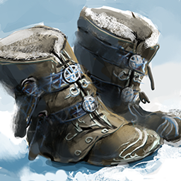 Boots Frozen Wastes