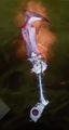Bleeder of Souls.png