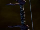 Обвязанная рукоять длинного лука