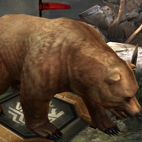 A Bear in <i><a href=