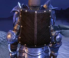 Heavy Wooden Shield