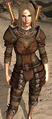 Dragon Hunter's Hauberk.png
