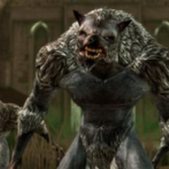 Grupka wilkołaków