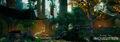 Emerald Graves 3.jpg