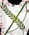 Герб долийцев