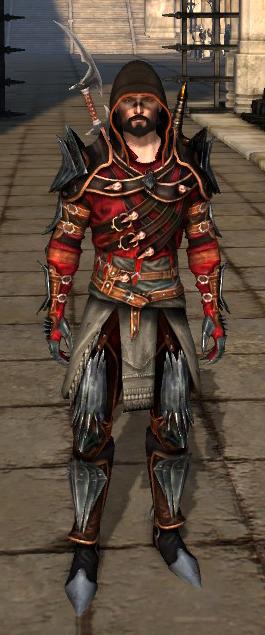zo goedkoop op groothandel gewoonte Mantle of the Champion (rogue) | Dragon Age Wiki | FANDOM ...