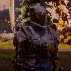 A Grey Warden Warrior