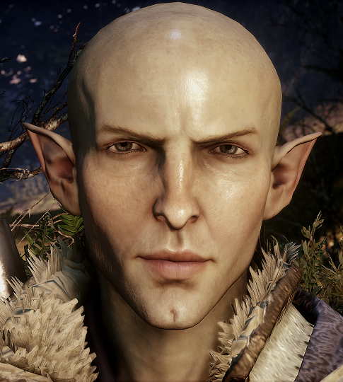 Which dragon age character should you hook up with