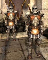 Форма стражника из кирволлской стражи