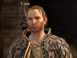Begleiter (Dragon Age II)