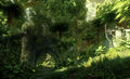 Arbor Wilds Inquisition.jpg