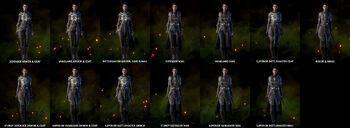 Cass Armor Variation