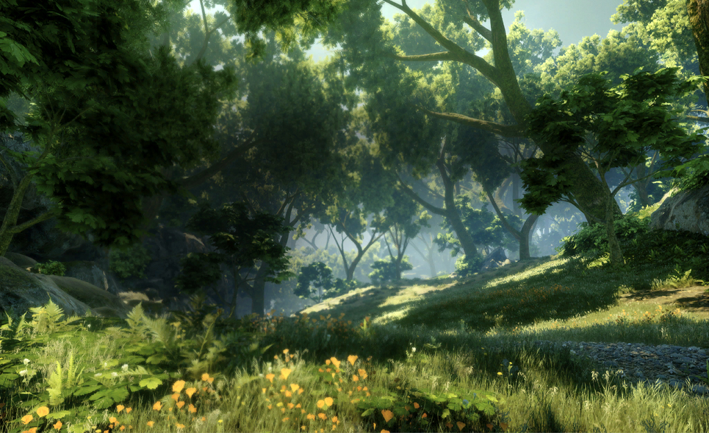 Deep In Heart Of Emerald Forest >> Emerald Graves Dragon Age Wiki Fandom Powered By Wikia