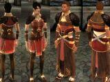 Одеяние лорда-магистра