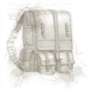 Рюкзак DAO загруз экран
