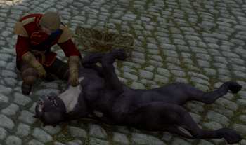 Dragon Age Expensive Dog Treats