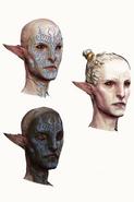 Inquisition Arlathan Elves concept 1