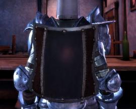 Тяжелый металлический щит